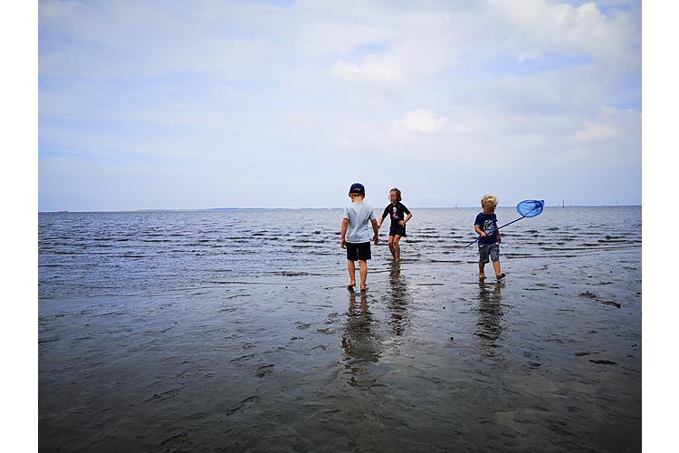 So sah der Spass im Sommer aus: Die Kinder lassen sich von Corona nicht die Laune verderben und geniessen das Wattenmeer.