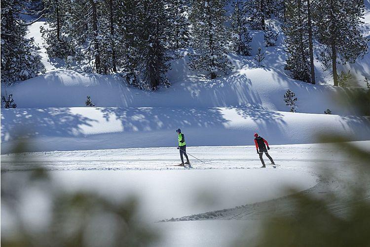 Zauberhafte Winterlandschaft: die Langlaufoipen vom Salwideli mit viel Panorama