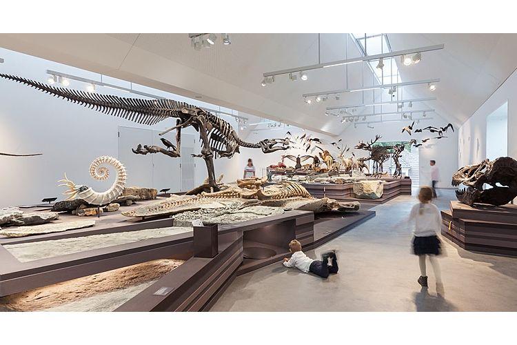 Evolution zum Anfassen im Naturmuseum St. Gallen
