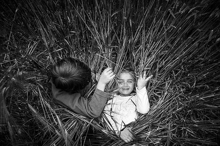 Jedes Kind sollte die Gelegenheit erhalten, zu sagen, wie es ihm geht und was ihm helfen würde, friedlich mit dem anderen weiterzuspielen.