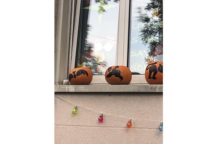 Alle Jahre wieder: Alle Kindergangs aus der Nachbarschaft klingeln an Halloween an der Haustür unserer Autorin. So war es zumindest vor Corona.