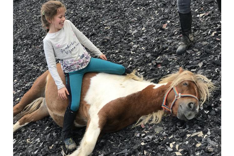 (1/3) Jade verbrachte viel Zeit mit ihrer grossen Liebe: den Pferden.