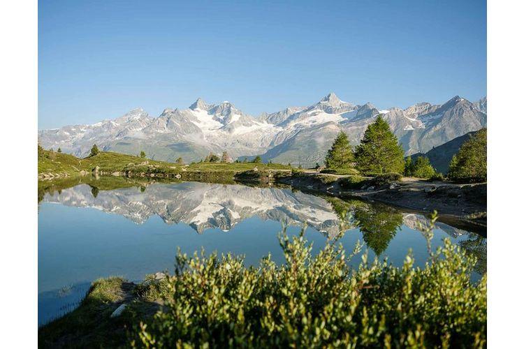 Der Grünsee bietet für Botanik-Fans eine reiche Alpenflora und faszinierende Mini-Moore. Auch eröffnen sich hier ideale Foto-Sujets: viele 4000er, darunter das Weisshorn, Matterhorn oder Obergabelhorn